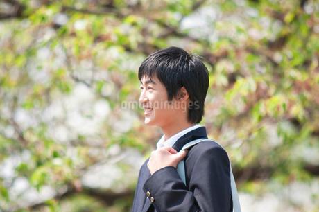 笑顔の男子高校生の写真素材 [FYI02001269]