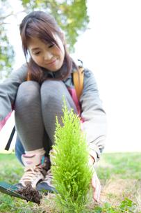 植樹する女性の写真素材 [FYI02001952]