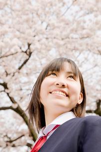 桜を見上げる女子中学生の写真素材 [FYI02002174]