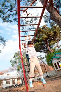 うんていで遊ぶ保育園児の写真素材 [FYI02002467]