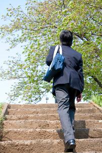 階段をのぼる男子高校生の後姿の写真素材 [FYI02002840]