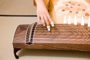 琴を弾く女性の手元の写真素材 [FYI02002866]