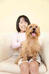 ノーフォークテリアを膝に乗せる笑顔の女の子の写真素材 [FYI02002954]