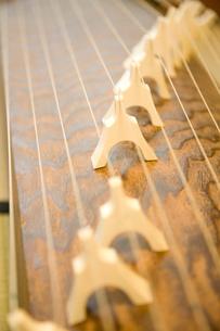 琴の柱と弦の写真素材 [FYI02003048]