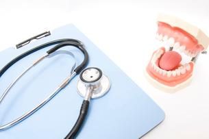 聴診器と歯の模型の写真素材 [FYI02003228]