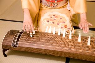 琴を弾く女性の手元の写真素材 [FYI02003274]