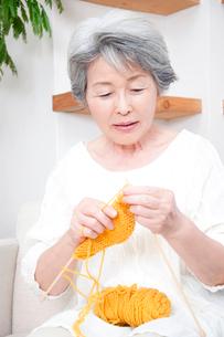編み物をするシニア女性の写真素材 [FYI02003376]