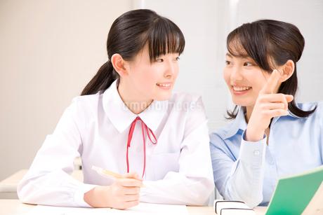 勉強を教わる女子中学生の写真素材 [FYI02003415]