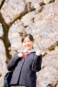 桜の下でガッツポーズをする女子中学生の写真素材 [FYI02004336]