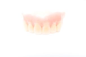歯の模型の写真素材 [FYI02004479]
