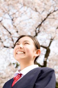 桜を見上げる女子中学生の写真素材 [FYI02004532]