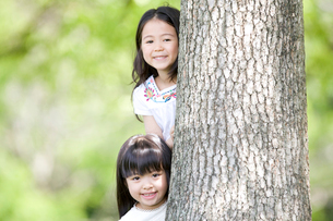 木の陰から顔を出す2人の女の子の写真素材 [FYI02004535]