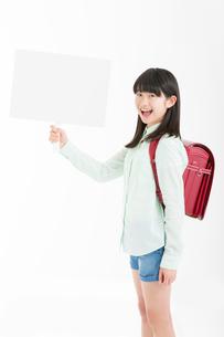 プラカードを持つ女子小学生の写真素材 [FYI02005717]