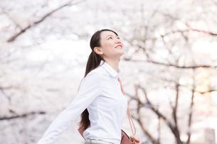 桜並木の下を歩く女性の写真素材 [FYI02006638]