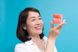 歯の模型を持つ笑顔のシニア女性の写真素材 [FYI02006661]