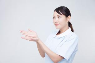 案内する看護師の写真素材 [FYI02006681]