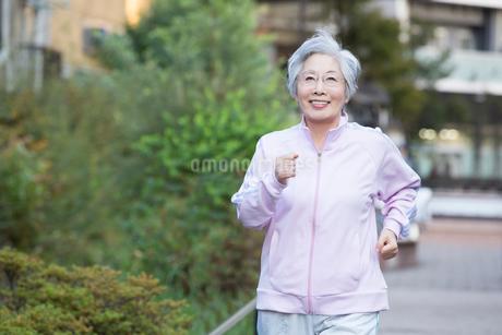 ウォーキングをするシニア女性の写真素材 [FYI02006983]