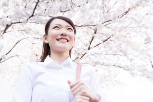 桜並木の下を歩く女性の写真素材 [FYI02007646]