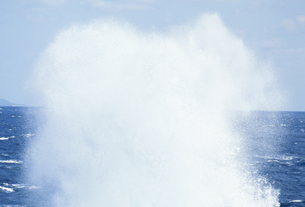 波しぶきの写真素材 [FYI02011996]
