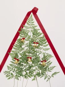 クリスマスツリーイメージの写真素材 [FYI02012155]