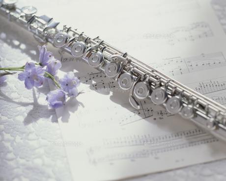 楽譜とフルートと花の写真素材 [FYI02012219]