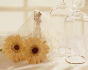 ガーベラと香水瓶の写真素材 [FYI02012491]