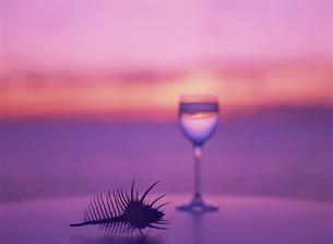 テーブルのグラスと骨貝と夕景の写真素材 [FYI02012543]
