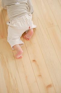 床をハイハイする赤ちゃんのおしりの写真素材 [FYI02012968]