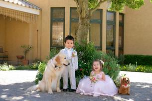 犬とタキシードを着た男の子とドレスを着た女の子の写真素材 [FYI02012996]