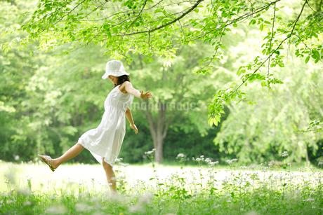 野原を歩く白いワンピースの女性の写真素材 [FYI02013591]
