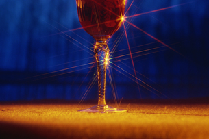 輝くグラスの写真素材 [FYI02014194]