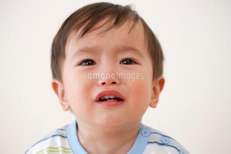 泣く子供の写真素材 [FYI02014235]