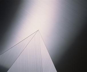 ヘアラインの写真素材 [FYI02015129]