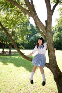 木の枝に腰掛ける制服姿の女子高生の写真素材 [FYI02015186]