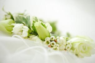 ベールと花束の写真素材 [FYI02015239]