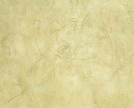 紙の写真素材 [FYI02015286]