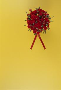 赤いカーネーションのアレンジの写真素材 [FYI02015420]