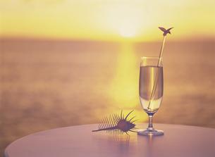 骨貝とグラスと夕景の写真素材 [FYI02015602]