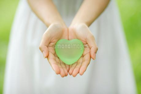 ハートを持った女性の手の写真素材 [FYI02015715]