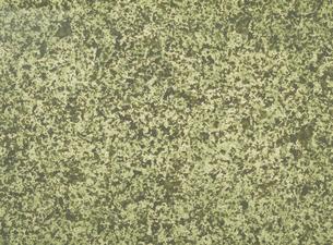 和紙の写真素材 [FYI02016011]