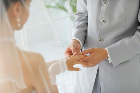 結婚指輪イメージの写真素材 [FYI02016310]
