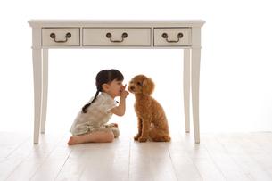 テーブルの下でかくれんぼの写真素材 [FYI02016338]
