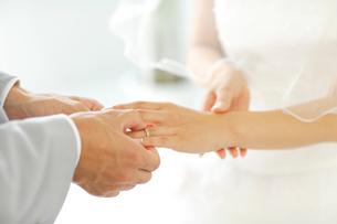 結婚指輪イメージの写真素材 [FYI02016713]