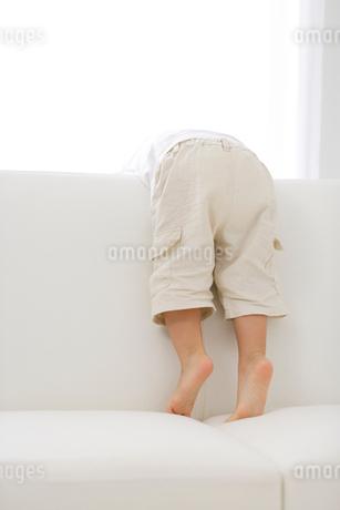 ソファで遊ぶ男の子の写真素材 [FYI02016877]