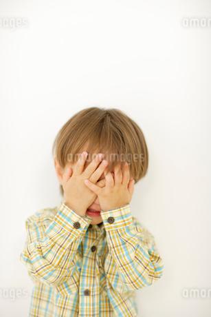 男の子のポートレートの写真素材 [FYI02016987]