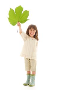 大きな葉っぱを持っているハーフの女の子の写真素材 [FYI02018853]