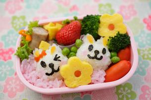 子供のキャラクター弁当の写真素材 [FYI02018972]