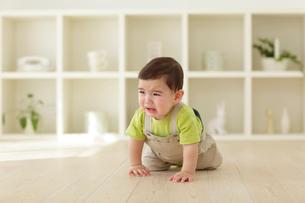 リビングで泣きながらハイハイする赤ちゃんの写真素材 [FYI02019245]