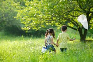 虫捕りをしているハーフの男の子と女の子の後ろ姿の写真素材 [FYI02020124]