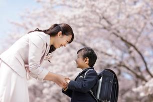 桜の下のランドセルの男の子とお母さんの写真素材 [FYI02020540]